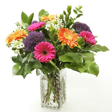 Cheery Gerberas & other blooms