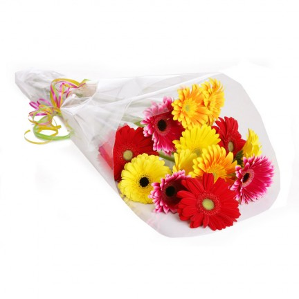Wrapped Gerberas