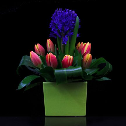 hyacinth tulip aspidestra and ruscus flower arrangement by Bloomers at the Market